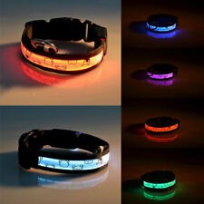 New Bear LED Glow Flash Dog Cat Puppy Nylon Pet Light-up Safety Collar