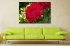 Canvas Poster Wall Art Print Decor Red Rose Rose Rosales Wet