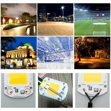 20W 30W 50W High Power SMD LED Chip Lamp COB Bulb Bead Light DIY FreeShip WM