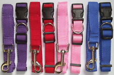 Small Dog Puppy Collar and Lead / Leash Set in 4 Colours 2cm wide Adjustable