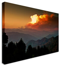 Forest Skies On Fire Canvas Prints Wall Art Picture Large Any Size