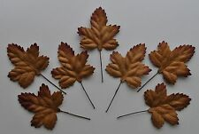 "Mulberry Paper Leaves Acer BROWN 1 1/2"" for scrapbook card making maple A3lb"