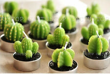 Original Cactus Candles