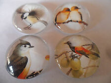 4 x Autumn Birds Images Glass Cabochons for Jewellery Projects,Scrapbook,Crafts