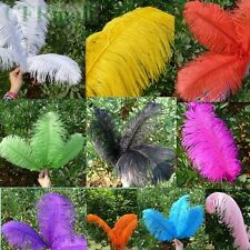 10 Colors FREE SHIPPING Wholesale 5PCS Natural OSTRICH FEATHERS 8-18inch/20-45cm