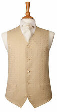 £10 MENS AND BOYS GOLD AND IVORY PATTERN WEDDING DRESS SUIT WAISTCOAT ALL SIZES