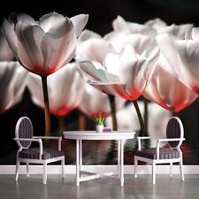 PHOTO WALLPAPER MURALS DECORATIONS HOME ART FULL HD TULIPS FLOWERS FLORAL 1102VE