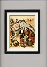 circus advertising Posters and framed pictures , vintage , dog performer