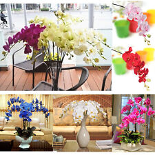 Artificial Silk Butterfly Orchid Flowers Stem Wedding Party Home Tabletop Desk