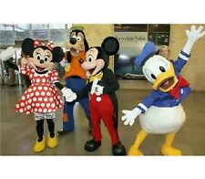 2014 NEW Adult Size Disney Donald Goofy Mickey Minnie Mouse Fancy Mascot Costume