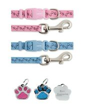 Ancol Petite Bite os chiot chien collier & lead set with free gravé Paw id tag