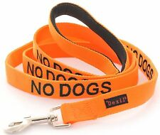 By Dexil NO DOGS Lead Orange (Not Good With Other Dogs) Also Matching Collar