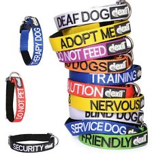 Dog Buckle Collar & Lead Sets Prevent Accidents By Warning Others In Advance