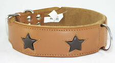 Tan Staffie Dog Collar With Brown Stars Staffy Collar Staffordshire Bull Terrier