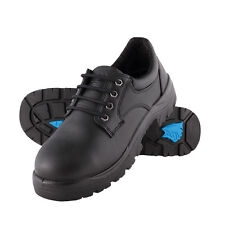Steel Blue - Shoe Safety Eucla (S312126)