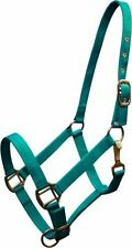 TEAL COBB Size Triple Ply Nylon Western Halter w/ Brass Hardware! NEW HORSE TACK