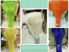 Wholesale!10-50pcs Quality beautiful natural peacock feathers 28-32inch/70-80cm