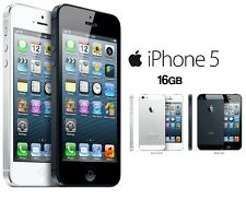 Apple iPhone 5 16GB Black/White Lock/Unlock in Very Good Condition With Warranty