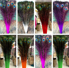 wholesale20-100 PCS peacock feathers eye 28-32 inches / 75-80 cm Choose