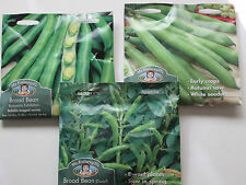 BROAD BEAN  - Mr Fothergills Seeds - The Sutton/Aguadulce/Bunyard** NEW STOCK**
