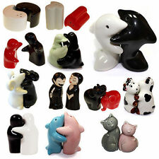 Ceramic Salt and Pepper Condiment Cruet Sets Fun Novelty High Quality Shakers