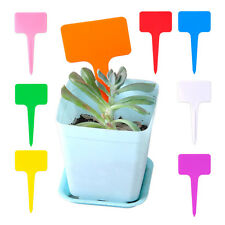 100x Plastic T-Type Plant Shrub Tree Tags Markers Labels Nursery Garden Pot