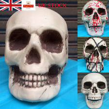 UK Halloween Party Decor Human Skeleton Skull Horror Scary Gothic Plastic Home