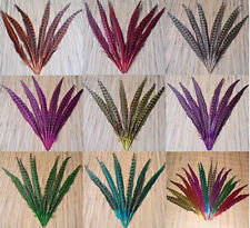 Wholesale quality 100 Pcs natural Pheasant Tail Feathers 30-35 cm /12-14 inch