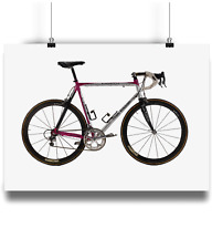 Pinarello prince Team telecom jan ullrich bicycle prints illustration campagnolo