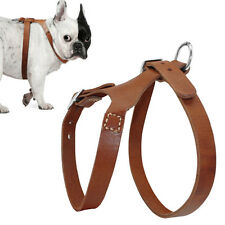 Medium Large Dog Harness Thick Leather for Pit Bull Boxer Bulldog Amstaff  Brown