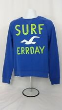 NWT HOLLISTER A&F Mens Dana Strands Blue Sweatshirt Graphic Logo - M, XL