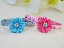 Cutie Pie Pink or Blue Teddy Dog/Puppy/Chihuahua Collar. 5 Sizes