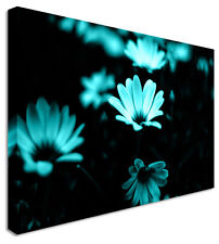 Baby Blue Blooming Beauty In Darkness Flower Canvas Wall Art Print