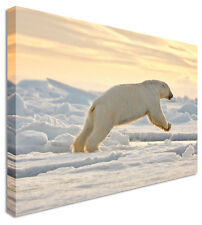 Large Running Polar Bear Canvas Pictures Wall Art Prints