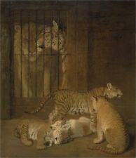 Group Whelps Bred Between Lion Tigress Jacques Laurent Agasse 1825 Repro-Art P