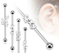 1pc Word Steel Industrial Barbell - choose from SEXY, YOLO, B*TCH or F*CK ME