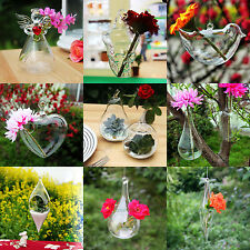 Glass Flower Plant Hanging Vase Hydroponic Container Home Car Wedding Decor Gift