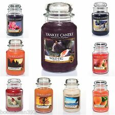 Yankee Candle Large Jar 22oz  New Q3 & Q2 2014 Collection  -11 New Fragrances