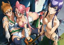 HIGH SCHOOL OF THE DEAD ECCHI ANIME LARGE POSTER, VARIOUS SIZES