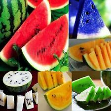 30PCS Rare Sweet Juicy Watermelon Seeds Delicious Fruit Viable Seeds 6 Kinds