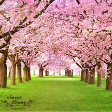 Huge Cherry Trees Wall Paper Wall Print Decal Wall Deco Indoor wall Mural Home