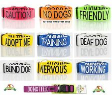 Strong Clip Heavy Duty Nylon Extra Large Safety Pet Dog Collar + 2+4+6 Foot Lead