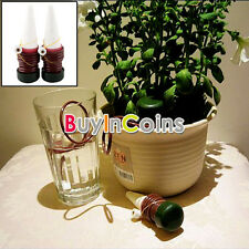 2/4Pcs On Sale Indoor Plant Watering Drip Spike Automatic Waterer System