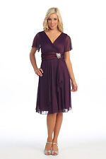 Simply Elegant Mother of the Bride Groom Knee Length Gown Short Sleeve Plus Size