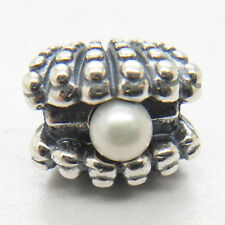 New Silver PEARL OYSTER CHARM  bead