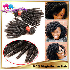 Malaysian Virgin Human Hair Extensions Afro kinky curly Weave Remy Hair Wefts