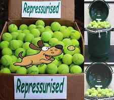 "Used Tennis Balls For Dogs ""REPRESSURISED"" 4 15 20 25 30 50 60 Dog Toy Ball Chew"