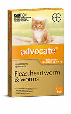 Advocate for Kittens and Small Cats Up to 4kg (Orange) Single, 3, 6 & 12 Packs