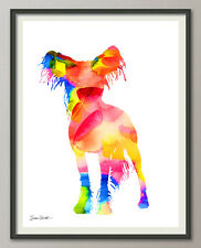chinese crested chinese crested Dog Dog All Sizes - Art print poster