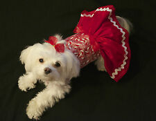 XSmall Christmas Holiday Shimmer Candy Cane Dress-Dog clothes- Puppy Apparel